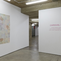 Carnival Glass installation view