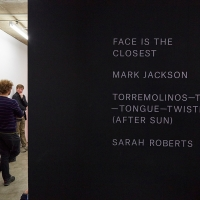 Sarah Roberts and Mark Jackson in conversation with Paul O'Kane