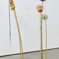 Pods, Pom-poms and Other Souvenirs   Elysia Byrd